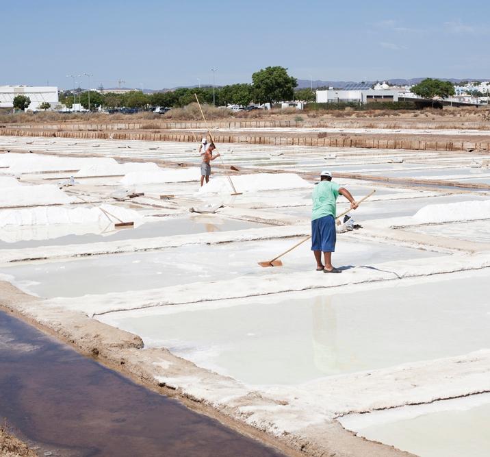 Aus den großen Salzbecken schöpfen Salzgärtner die feinen Salzblüten.