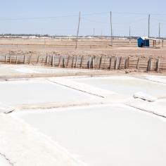 Unter der heißen Sonne Portugals trocknet das Salz in den Becken besonders schnell.